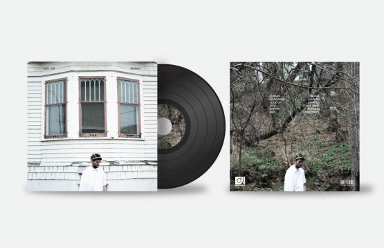 vinylcover-2